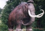 Naturkundemuseum Siegsdorf Mammut